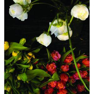C Talese_04j_April_Plaza Florist